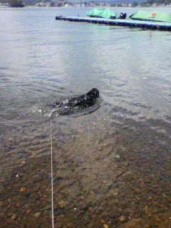 野尻湖へ。